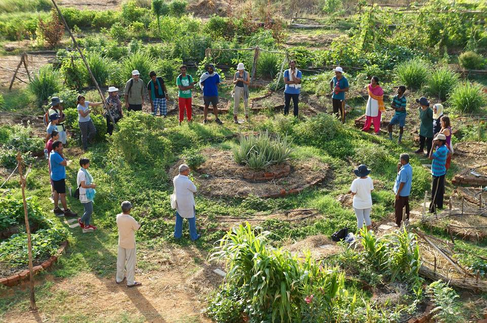 """""""Мандала"""" градина в Индия, създадена с мисъл за цялото и после - внимание към детайла"""