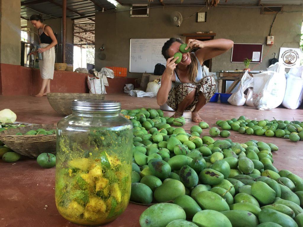 """съхраняваме хранителна """"енергия"""" в туршия от манго."""