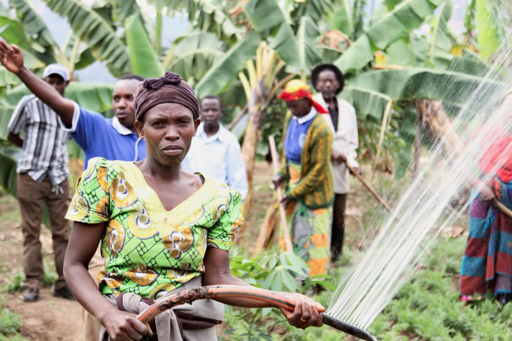 Venantie Mukacyemayire, member of the Turengere Ibidukikige Cooperative, Ngdrorero, Nyamagabe, Rwanda. Photo: Alan Whelan/Trócaire