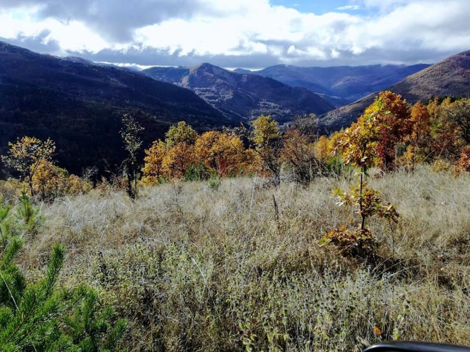 Живописните хълмове над град Своге, където расте изобилие от билки