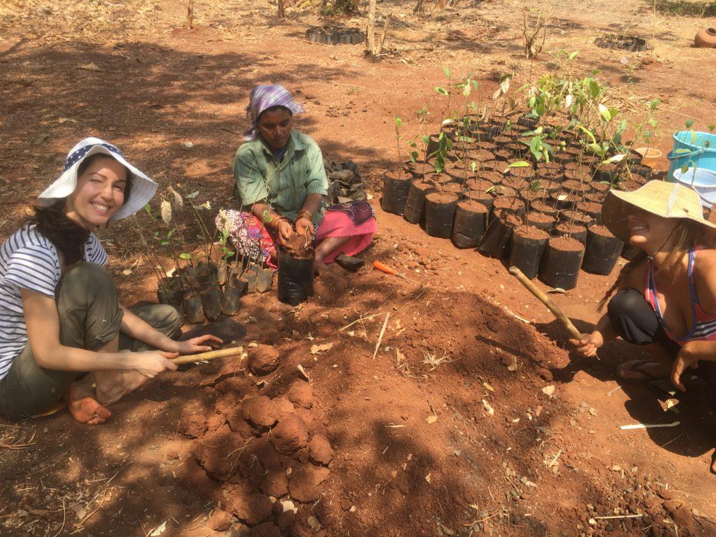Заедно с местните хора пресаждаме млади дръвчета